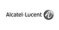 Alcatel - leadership skills training client