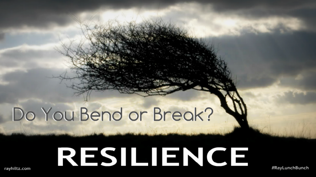 Resilience for leadership development